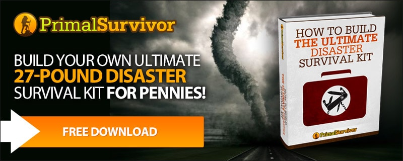 Download Your FREE Disaster Survival Guide Now!