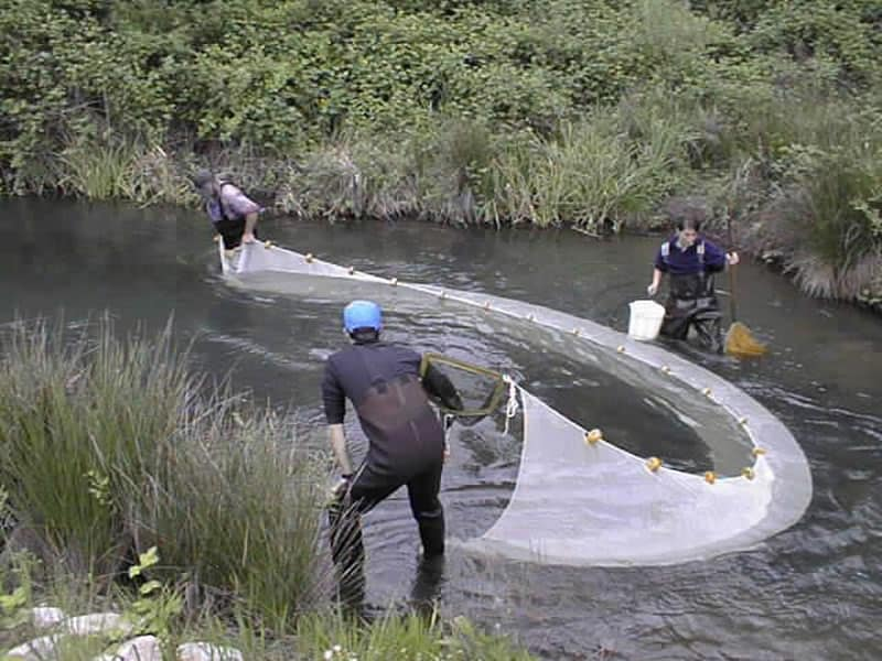 3 ways to make a survival fish trap for How many fishing rods per person in texas