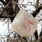 plastic bags for survival
