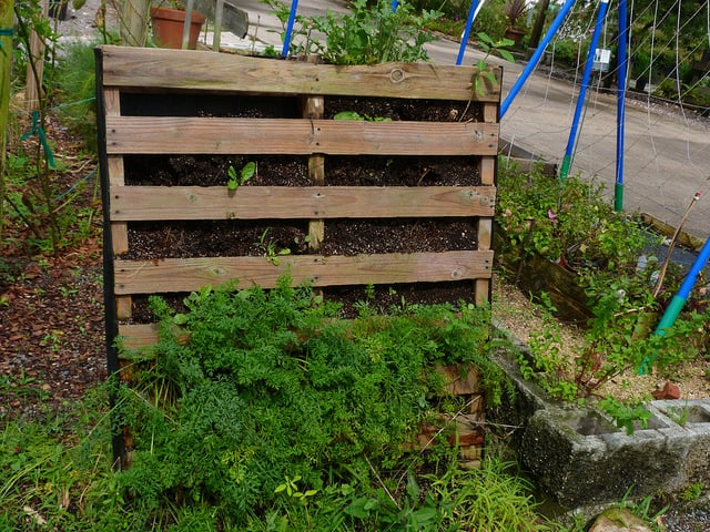 How to Build a Pallet Survival Garden that Will Feed Your Family for Months post image