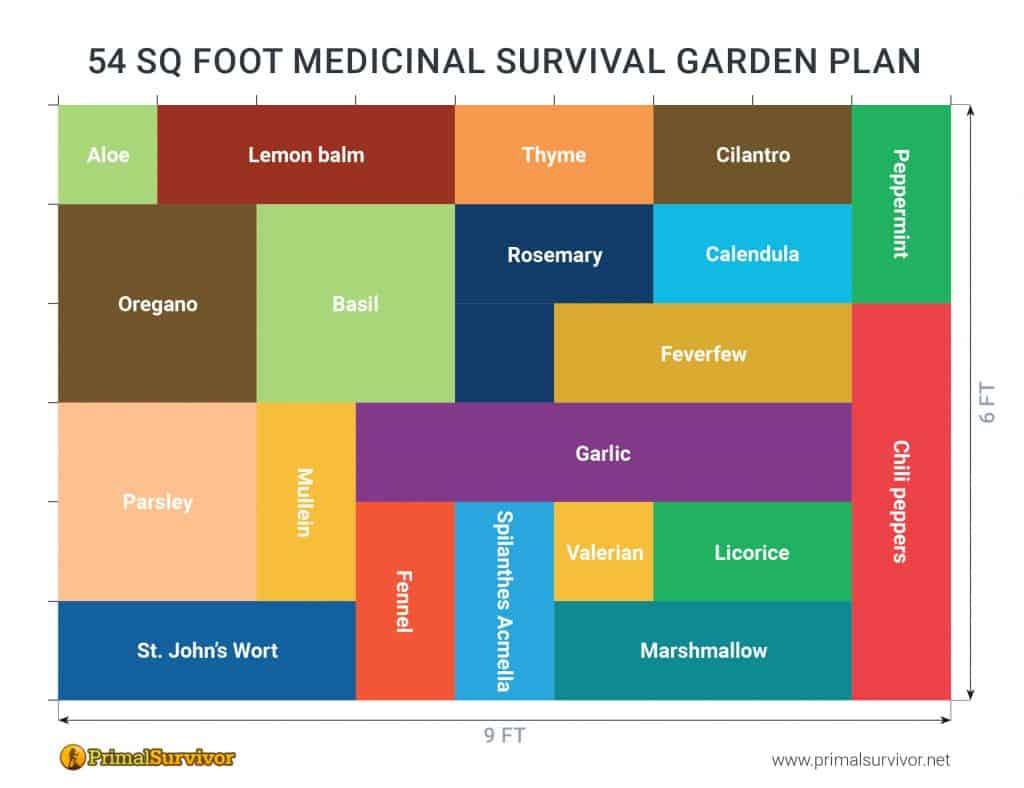 54 Square Foot Medicinal Garden Plan post image