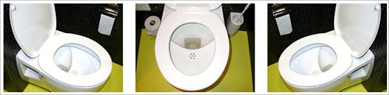 The Nomix urinen diverting toilet seat