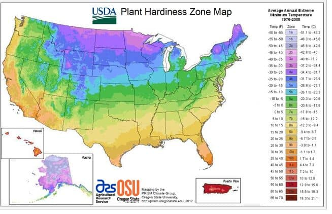 plant hardiness zone map