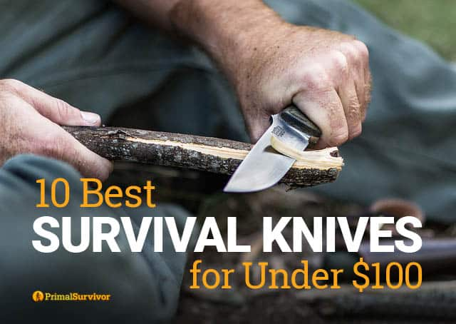 bushcraft knife under 100 dollars
