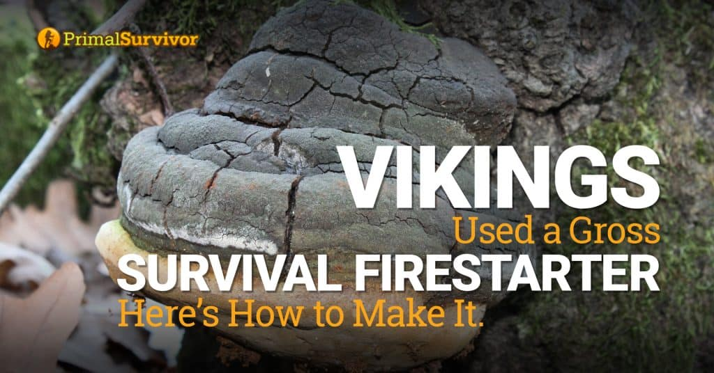 Vikings Used a Gross Survival Firestarter. Here's How to Make It post image