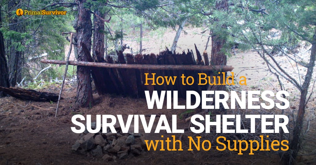 How to Build a Wilderness Survival Shelter with No Supplies post image