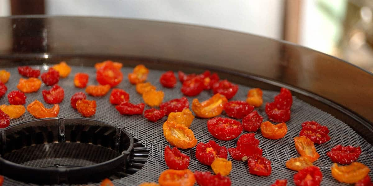 Doomsday Preppers Food Recipes