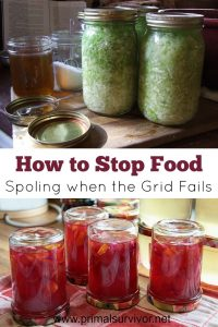 How to Prevent Food from Spoiling When You're Without Power