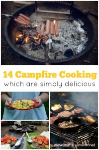 14 Campfire Cooking Ideas which are simply delicious