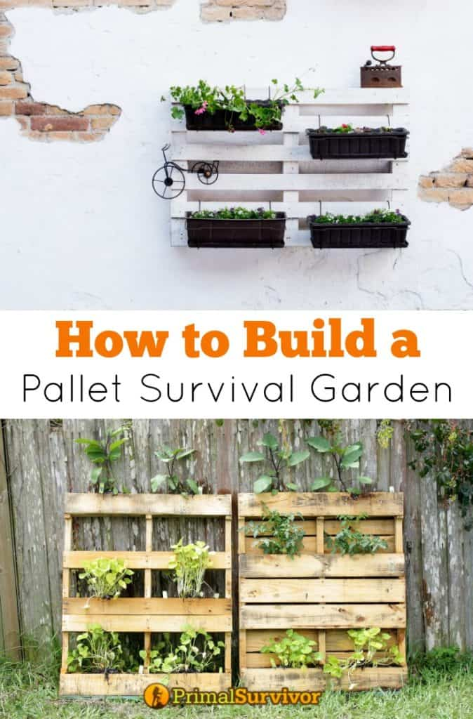 #How to Build a #Pallet #Survival Garden