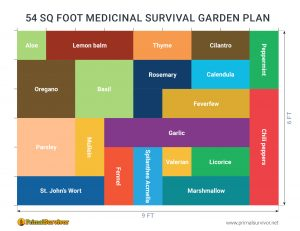 54 square foot survival garden plan
