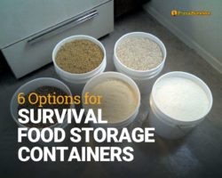 6 Options for Survival Food Storage Containers