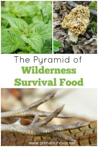 Pyramid of Wilderness Survival Food