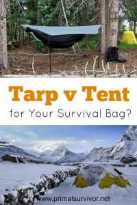 Tarp or Tent for your Survival Bag