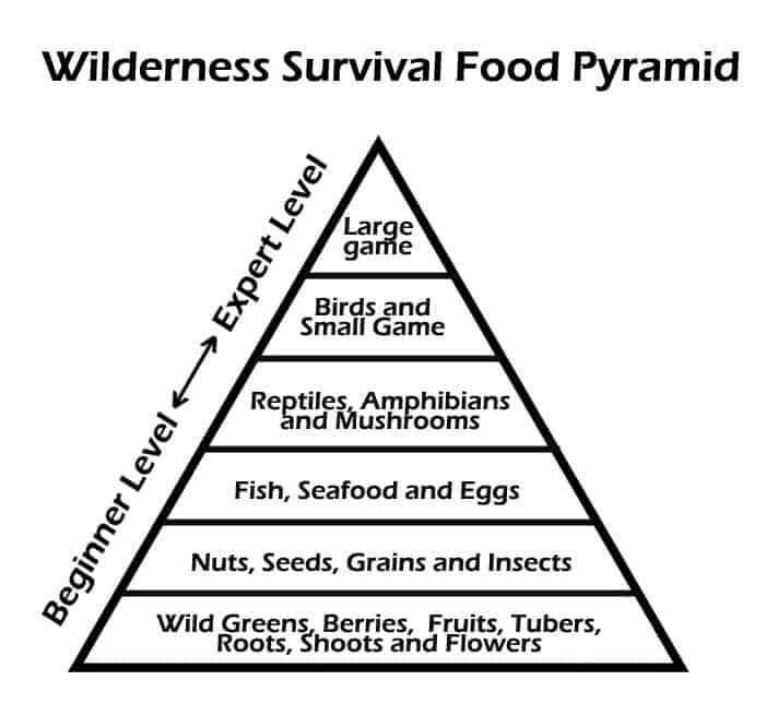 wilderness survival foods hierachy