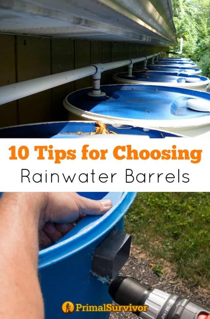 10 Tips for Choosing Rainwater Barrels