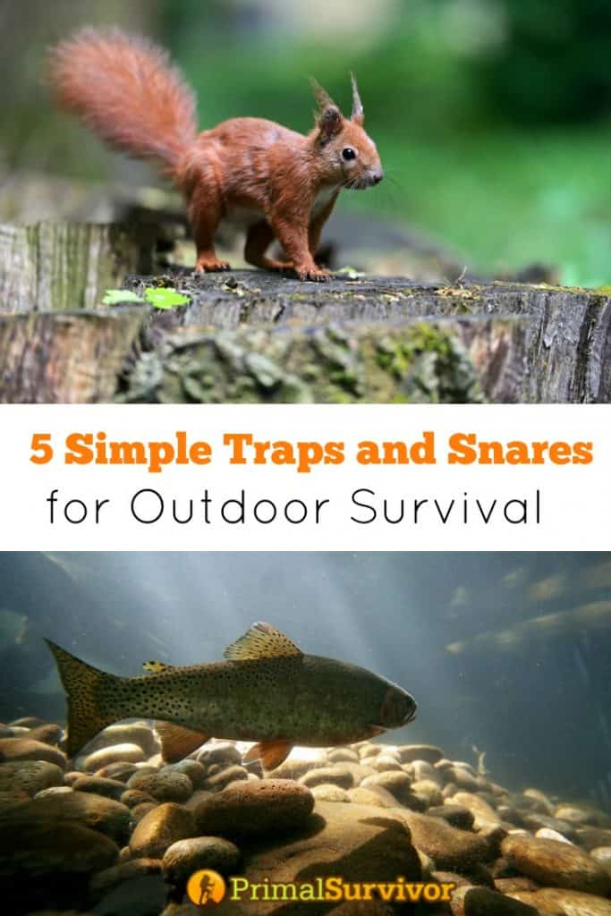 5 Simple Traps and Snares for Outdoor Survival