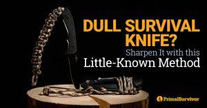 sharpen knife in the bush