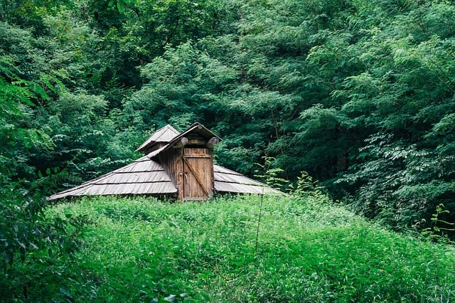 bug out cabin