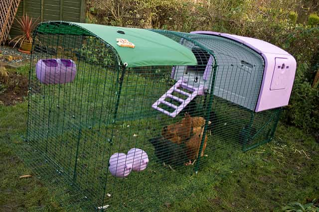 Ergu ready made chicken coop by Omlet