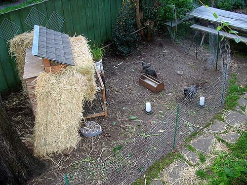 soundproofed chicken coop with hay bales