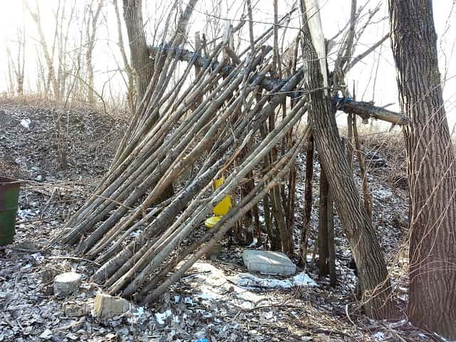 Here's an example of the shelter frame, though rope was used to make this survival shelter