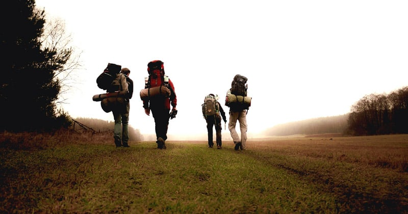 Hikers in a field with packs