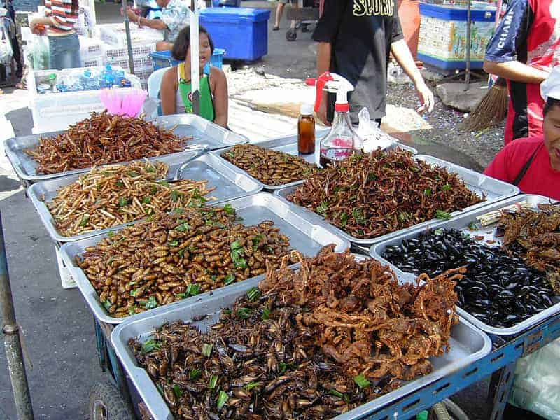 Insects for sale in Thailand