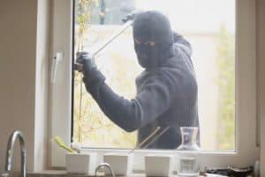 professional burglar