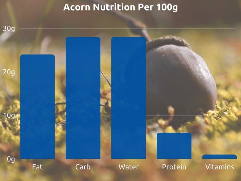Acorn nutrition graph