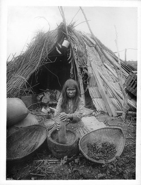 Paiute native americans eating acorns