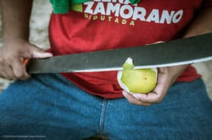 machete peeling fruit