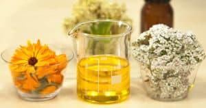 medicinal antibacterial plants