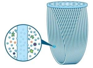 hollow fiber membrane filter
