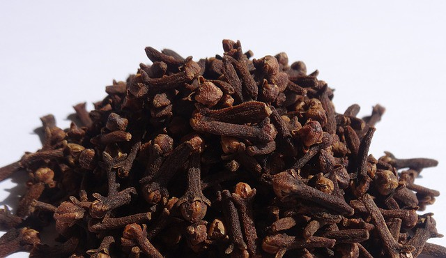 cloves for treating pain