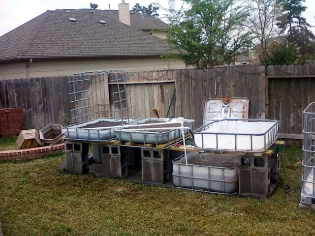 outdoor aquaponic garden