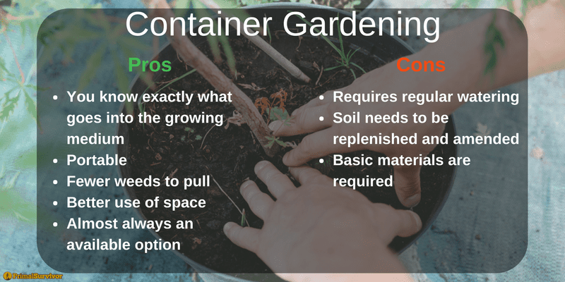Container Gardening Graphic