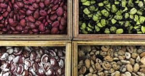 how to start a seed bank