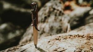 Self defense knife in log