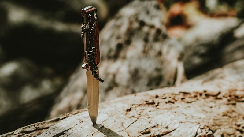 Self defense knife in log