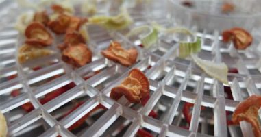 Expert-Level Food Dehydrating: Tips and Hacks for Drying All Types of Food