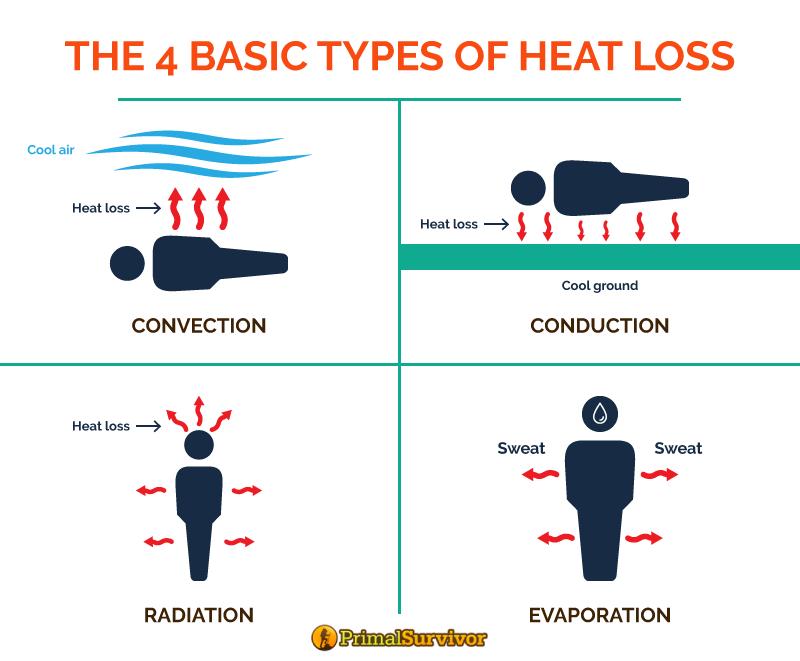 heat loss graphic