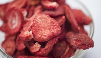 Freeze Drying Food at Home: How It Works and Is It Worth the Cost?