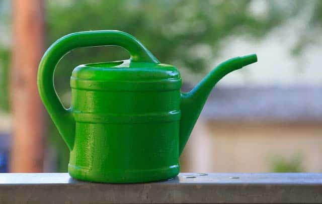 watering can lota