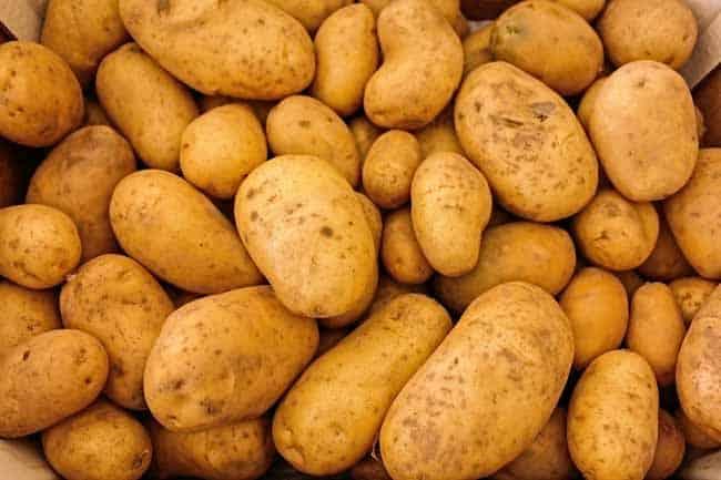 Potato image