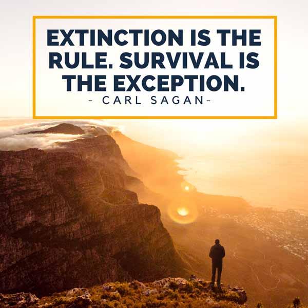 Carl Sagan Quote Graphic