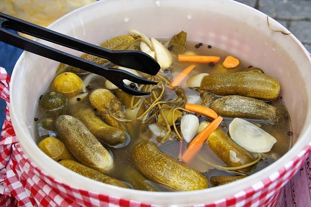 pickled with vinegar