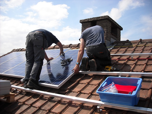 solar panels for self sufficiency