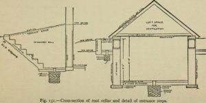 root cellar plan