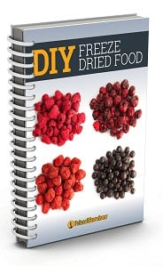 Freeze |dried food ebook cover